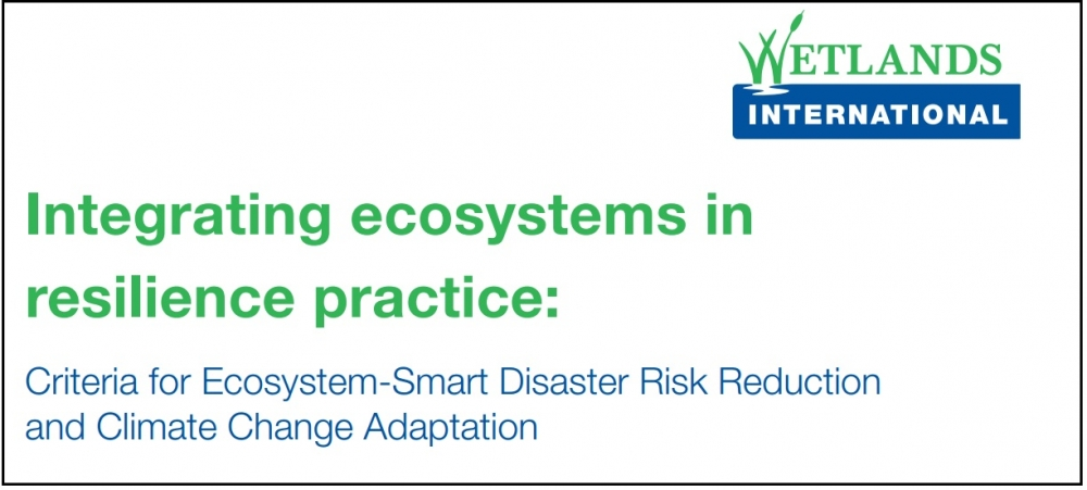 Integrating ecosystems in resilience practice