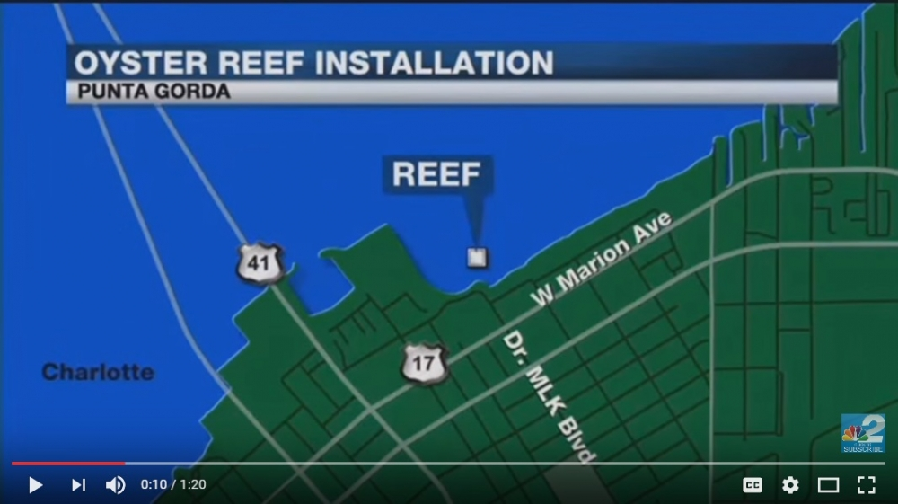 Oyster Reef in Charlotte Harbor to Protect against Storm Surge
