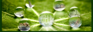Increased Capacity at Terminals and Reduction in Carbon Footprint Possible Through EcoHubs ICT Tools